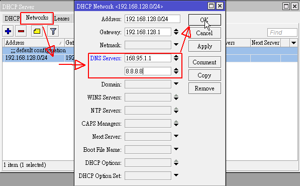 加入 DNS Server